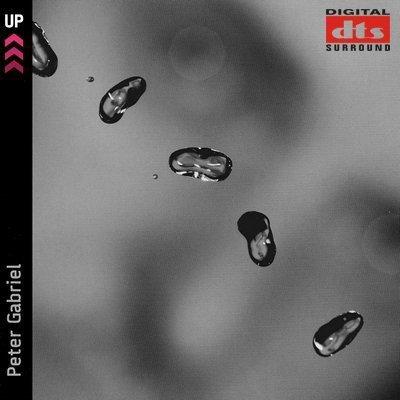 Peter Gabriel - UP! (2002) DTS 5.1