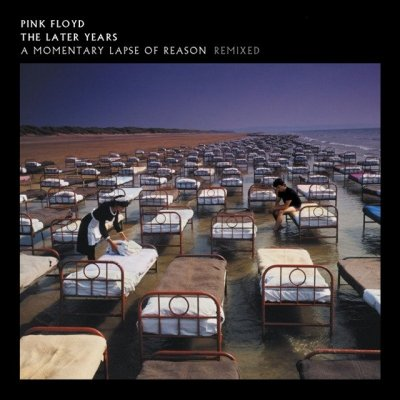 Pink Floyd - A Momentary Lapse Of Reason (2019) DTS 5.1